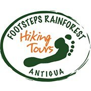 Footsteps Rainforest Hiking Tours